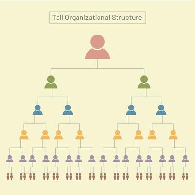 Tall Organizational Hierarchy