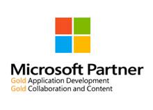microsoft-partner.jpg