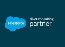 silver-sales-force-partner.jpg