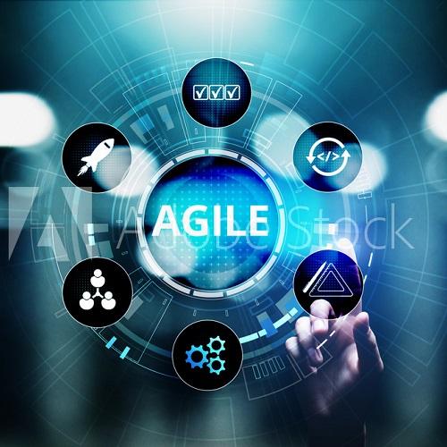 Self-assess your enterprise agility