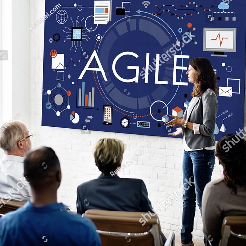 Do you think like an agile leader? Assess now!
